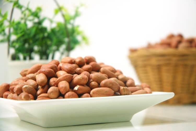 Vegane und Vegetarische Ernährungsform