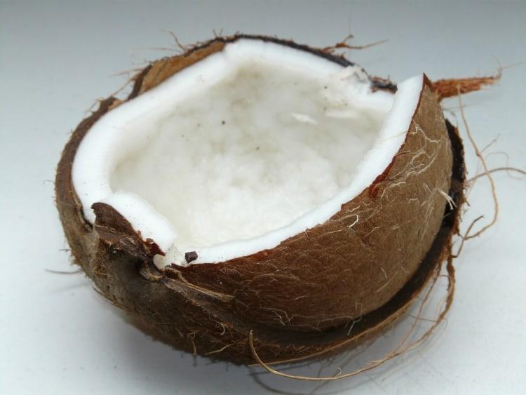 Besonderheiten von Kokos | Premium